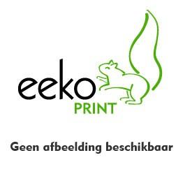 Voordeelset: 2 x zwart, 1 x cyaan, geel en magenta Eeko Print